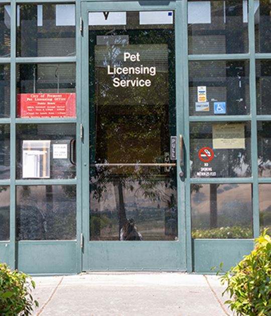 Pet licensing services entrance
